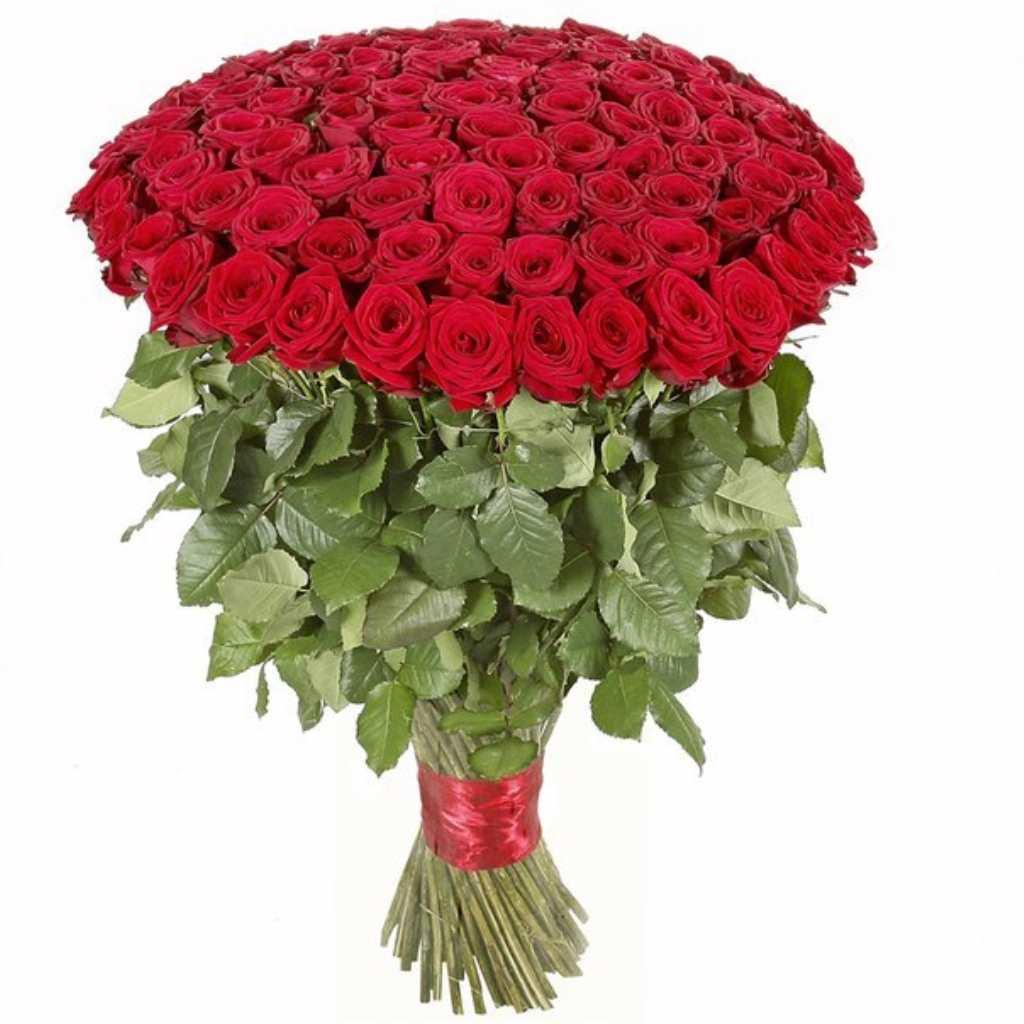 Фото букет миллион алых роз