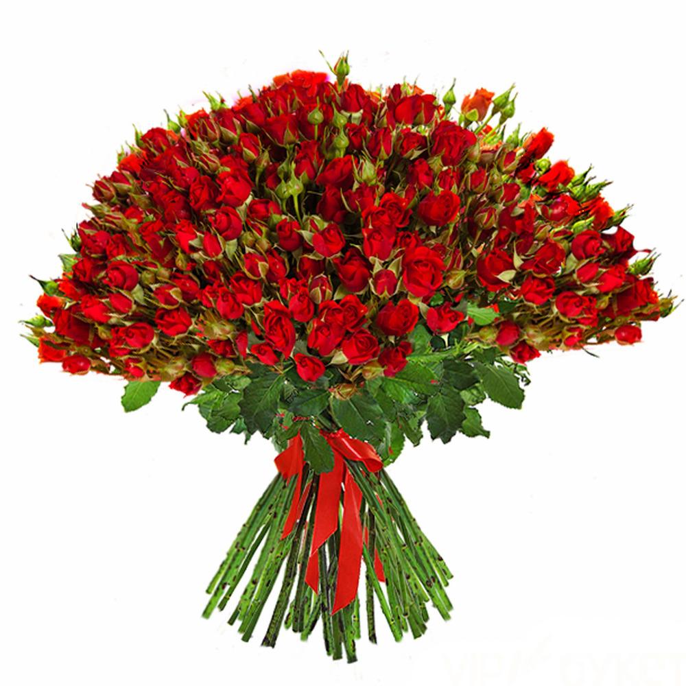 Каталог букетов - Цветочная сеть Роза 25
